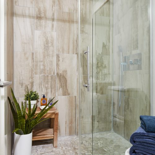 toronto condo bathroom renovation - small space bathroom with walk-in shower - modern bathroom renovation - using large tile in small spaces - grey bathroom tiles - decorating with plants - small space design and living - linda mazur design toronto designer
