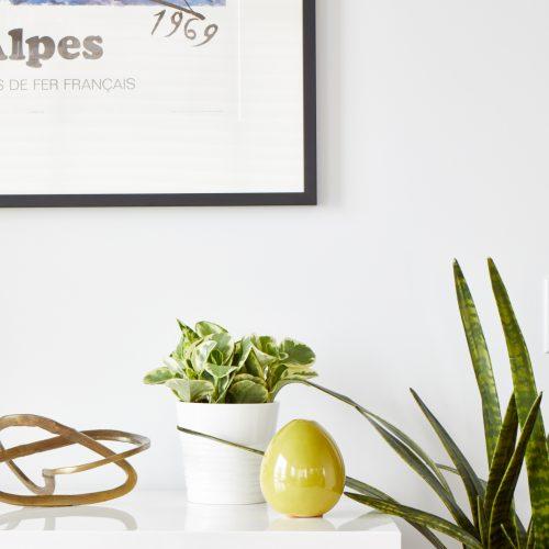 downtown toronto condo small space living - scandi modern design - dining room cabinet display - decorating with plants - all white condo design- linda mazur design toronto designer renovations