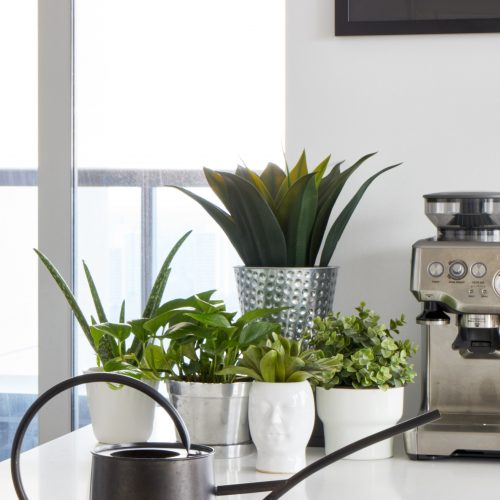 toronto condos small space living - quartz counters and decorating with plants - featured in houzz - Breville coffee station - toronto designer linda mazur design